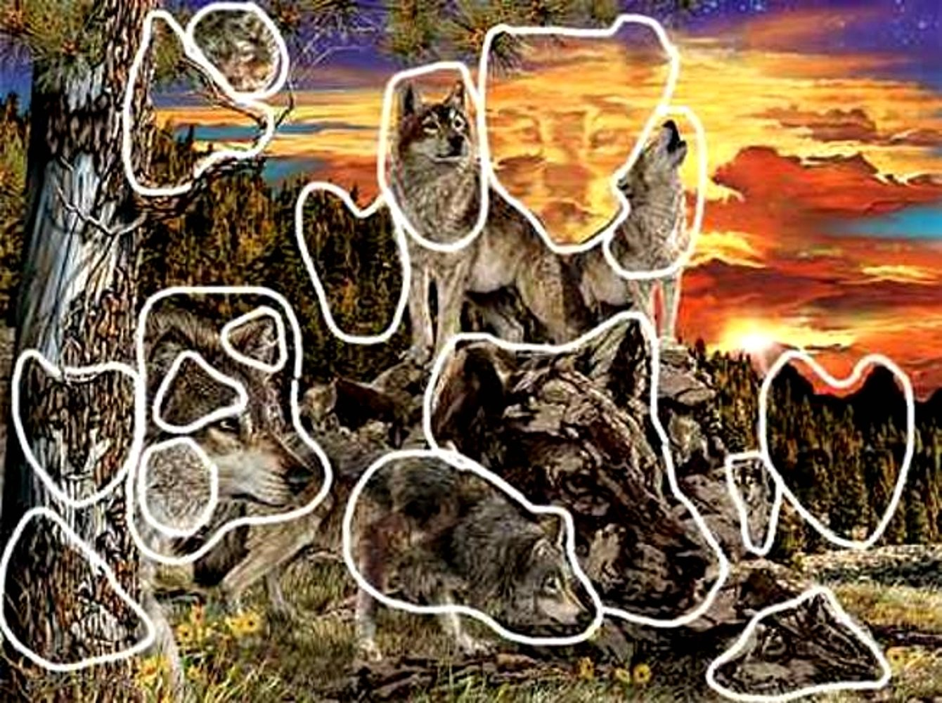 сколько животных на картинке фото высотка