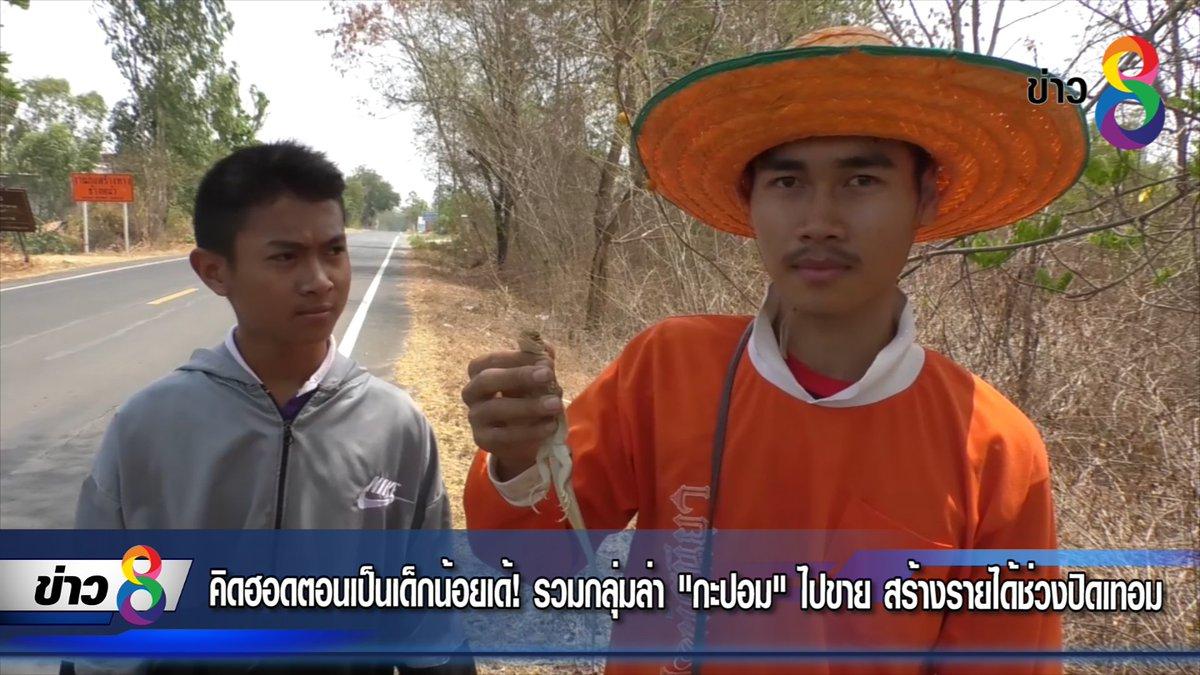 """คิดฮอดตอนเป็นเด็กน้อยเด้! รวมกลุ่มล่า """"กะปอม"""" ไปขาย สร้างรายได้ช่วงปิดเทอม https://www.facebook.com/newsthaich8/videos/2238304473089745/… #ข่าวช่อง8 #กะปอม #กิ้งก่า #นักล่ากะปอม"""