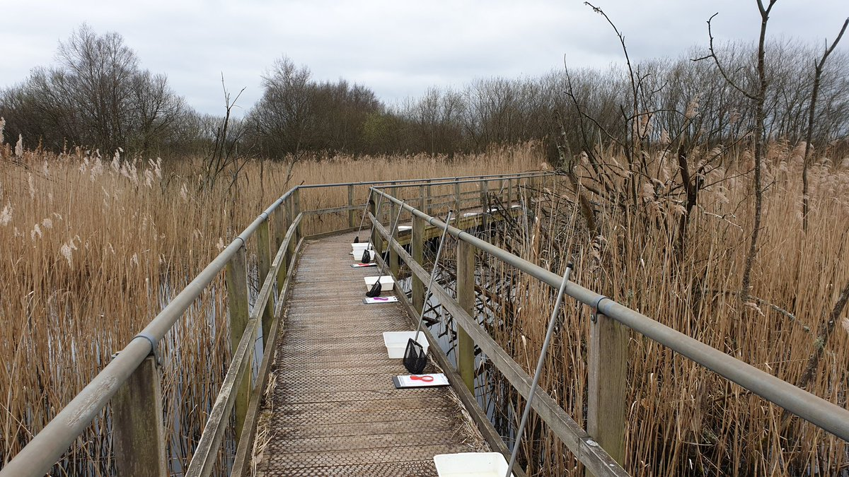 Setting up for a hard day&#39;s work in the #WesthayMoor office!  @SomersetWT #Somerset @AvalonMarshes<br>http://pic.twitter.com/1dsXHomv4x
