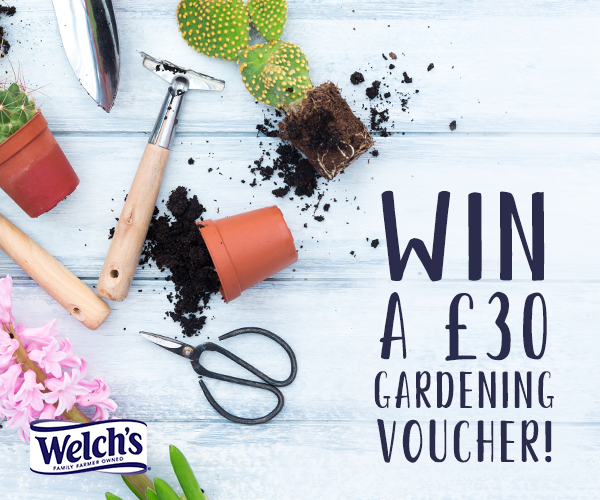 Follow, Retweet and Reply for the chance to Win a £30 Garden Centre Voucher!  It's time for Tulips and Daffodils to be gracing our gardens, add some colour to your spring with £30 to spend on something for the home or garden! Ends 1pm 28/03, UK Entrants, T&amp;Cs Apply #FreebieFriday <br>http://pic.twitter.com/tZ0JVrFx5J
