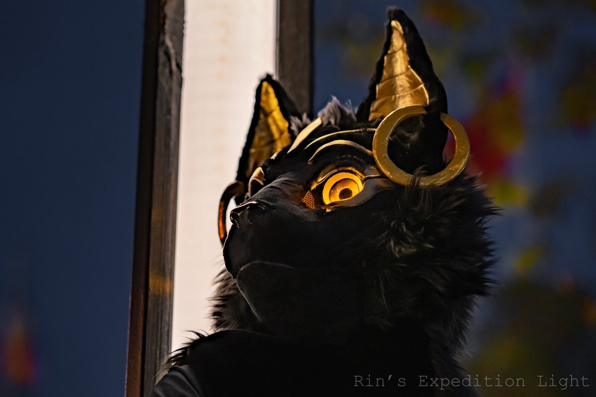 Testing Zeiss 55mm F1.8 and Sony 85mm GM! Ana &amp; photography Photos taken by my mom #FursuitFriday<br>http://pic.twitter.com/GyPbnJFXY3