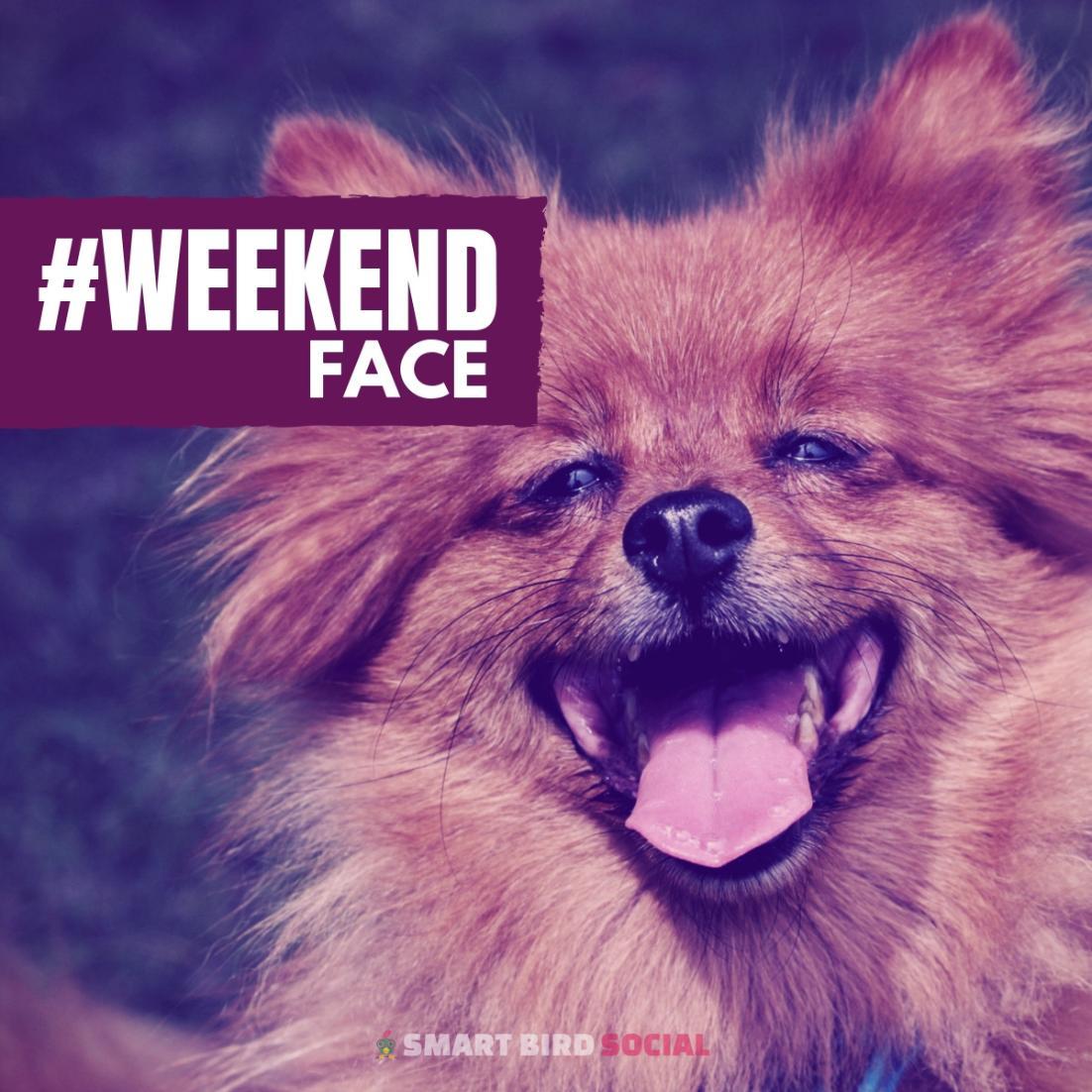 Meghan Monaghan 🌸's photo on #WeekendVibes