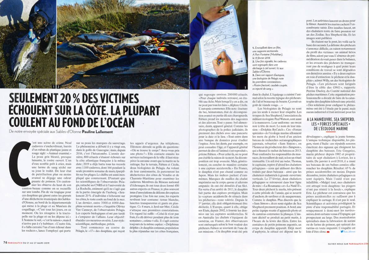 """Excellent article this week in @ParisMatch on Operation B-Catch to protect dolphins in the Bay of Biscay. They call @seashepherd the """"Special forces of Maritime ecology."""""""