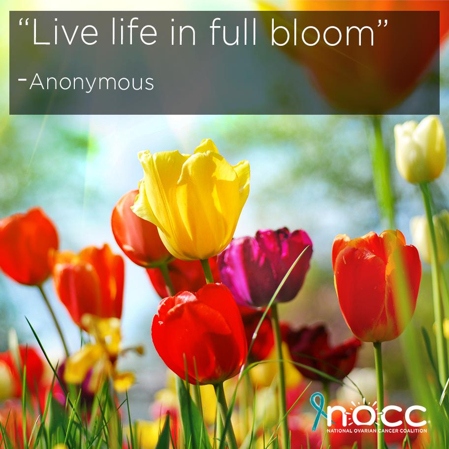 Natl Ovarian Cancer's photo on #FeelGoodFriday