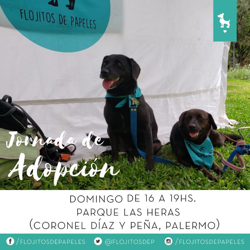 Flojitos de Papeles's photo on #buenviernes