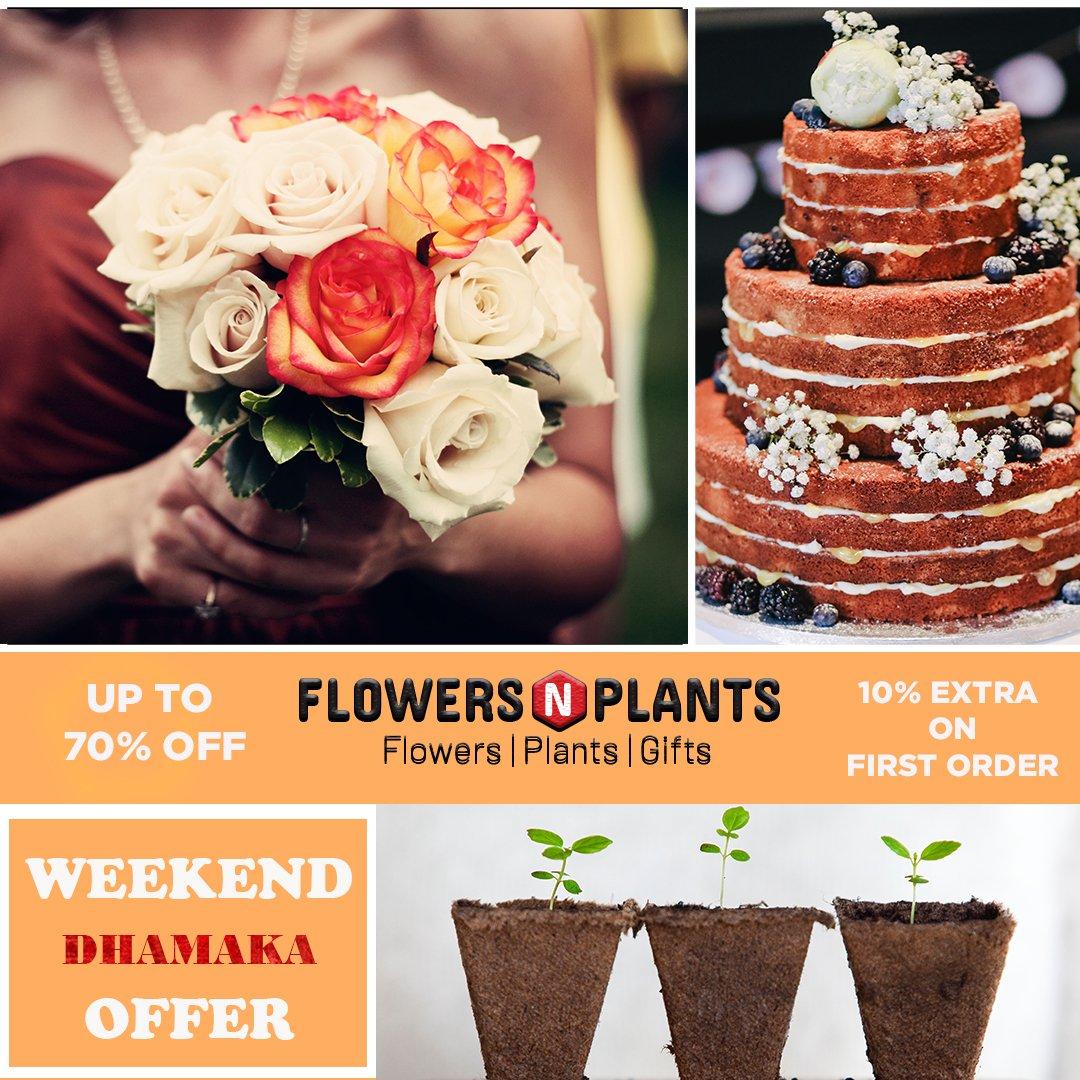 Flowers N Plants's photo on #WeekendVibes