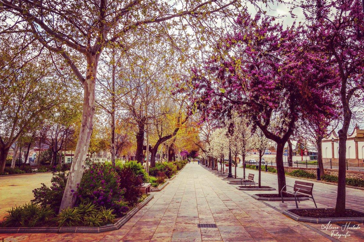 Málaga con acento's photo on #FinDeSemana