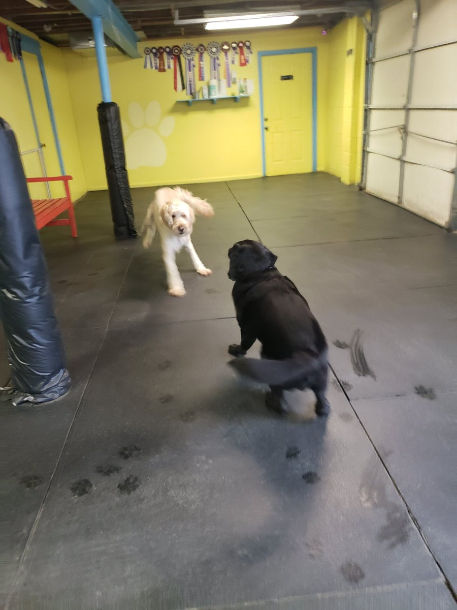 """Greta says to Riley H, """"Let's play!""""."""