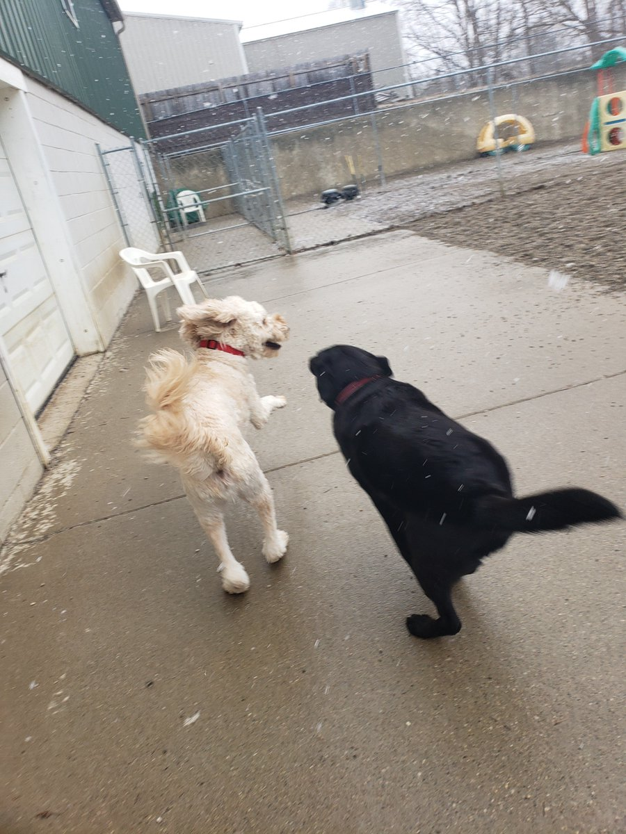 """Riley H. says to Greta, """"Catch me if you can!""""."""