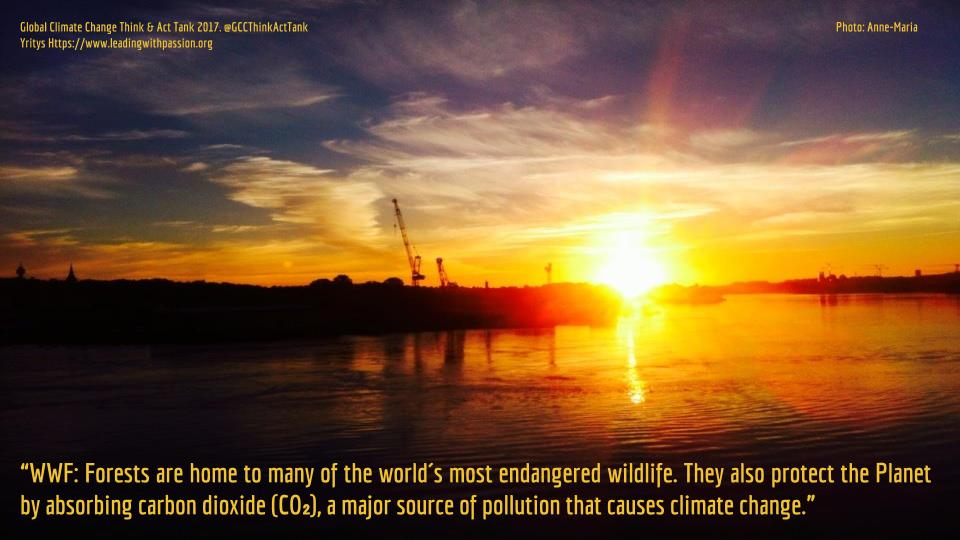What are some of the many reasons to protect forests? http://bit.ly/GCC999Climate #climatechange #climateaction