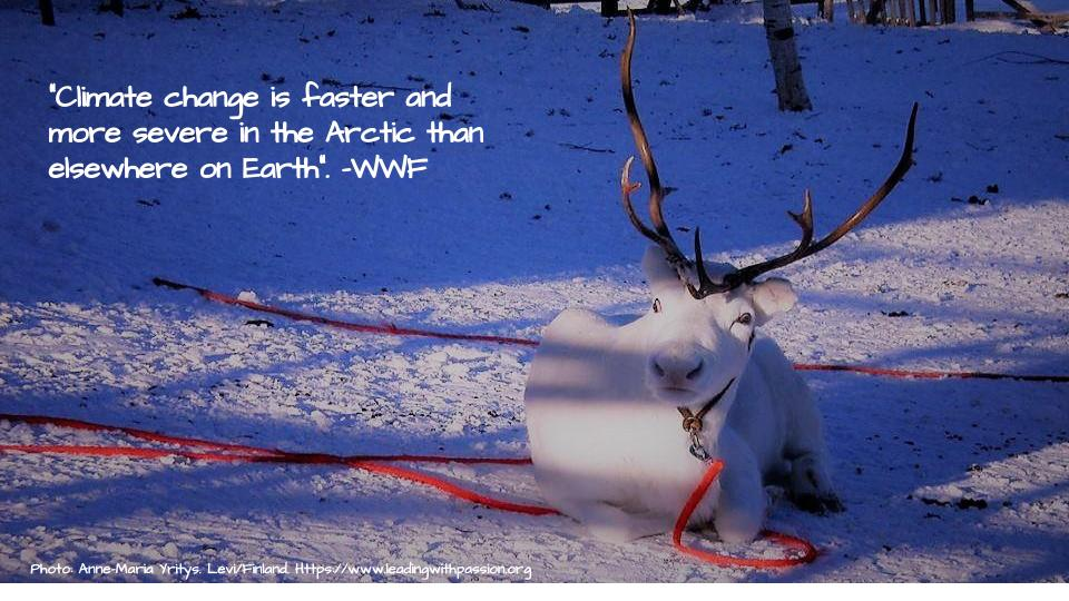 Why is climate change more rapid and more severe in the Arctic region? http://bit.ly/ARCTIC000 #climatechange #climateaction