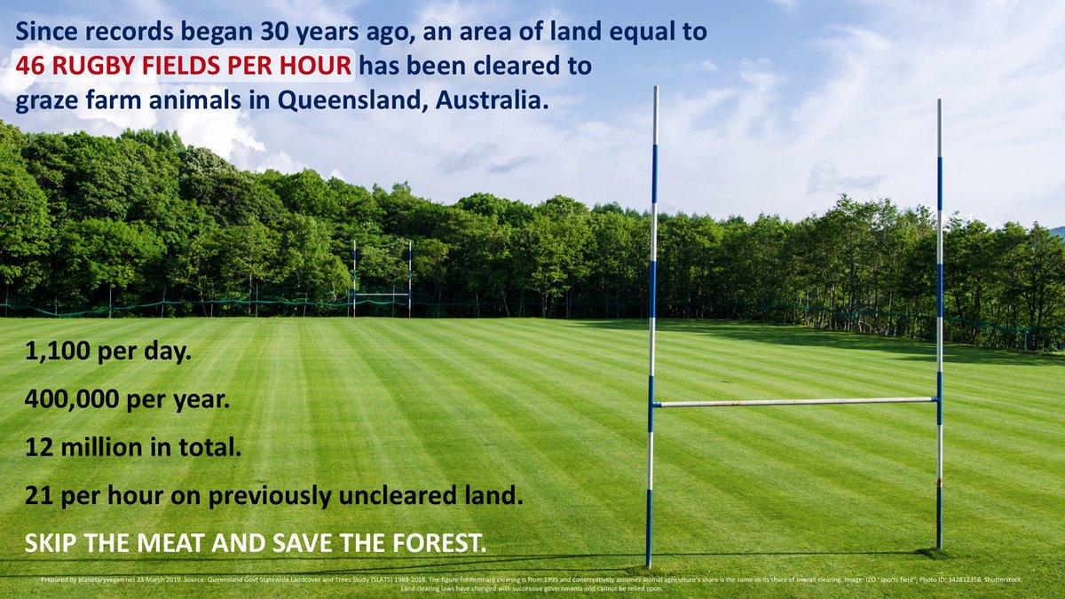 #deforestation #Livestock #climatechange #climate #ClimateAction #ClimateCrisis #climatestrike