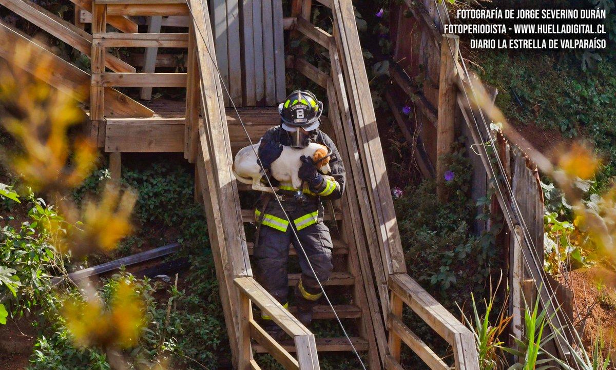 """RT @CBV1851 """"TODA VIDA NOS IMPORTA"""" #CBV1851  Fotografía capturada por Jorge Severino Durán el día 20/03/19 durante un incendio estructural declarado que afectó a viviendas de calle Río Bueno en San Roque, #Valparaíso."""