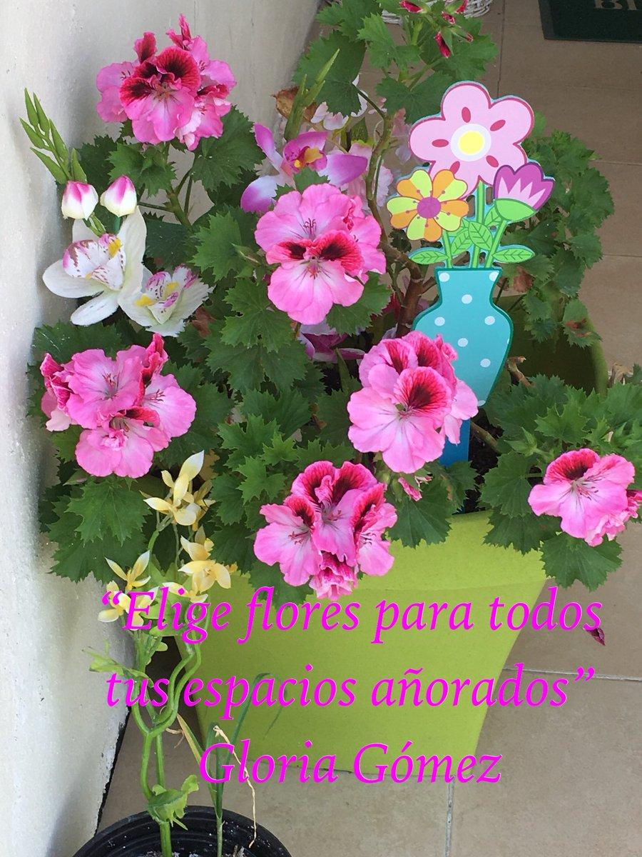 Gloria G. Càrdenas's photo on #FelizViernesATodos