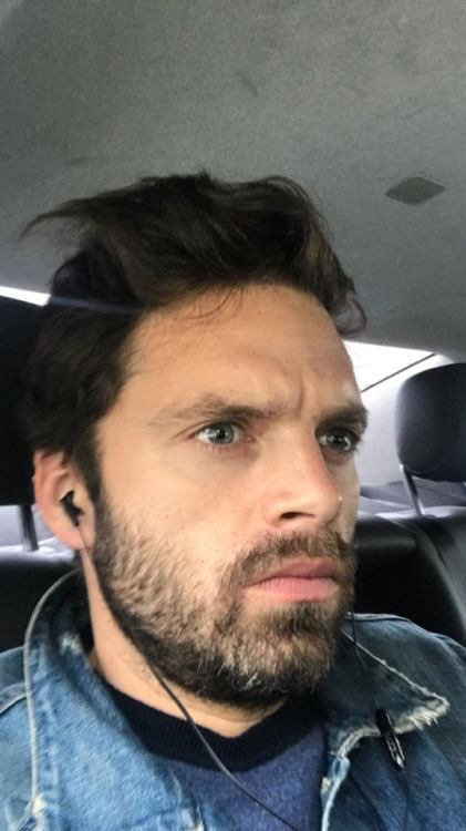 bearded seb is the best seb