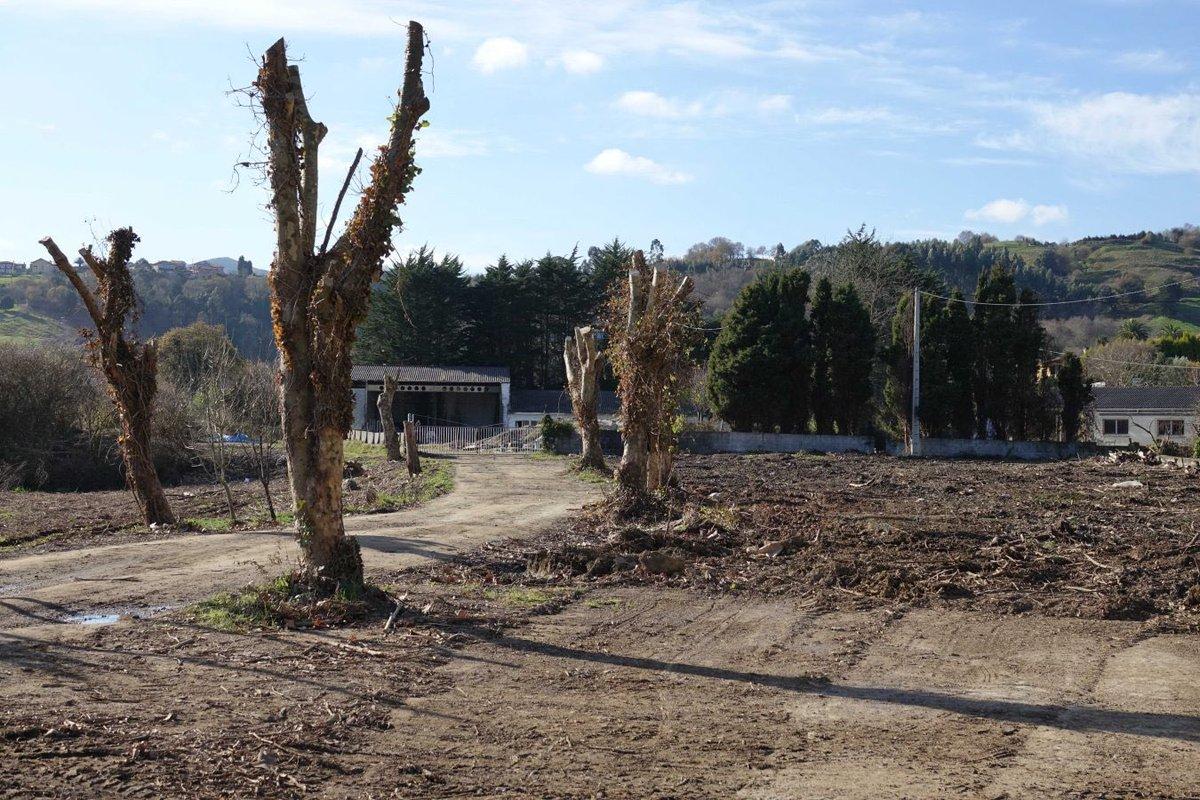 Los ecologistas paralizan los huertos urbanos que #Ribadesella quiere crear en #LaMediana https://coperibadesella.com/22/03/2019/los-ecologistas-paralizan-los-huertos-urbanos-que-ribadesella-quiere-crear-en-la-mediana/…pic.twitter.com/CkwP5aK8kJ