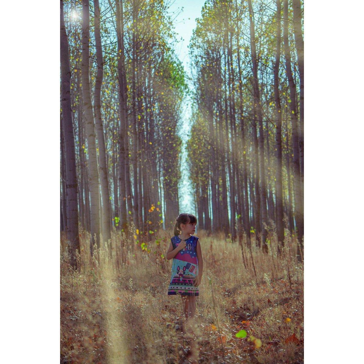 Los caminos son oscuros y peligrosos, pero si buscas siempre habrá una luz que guiará tu destino.  #light #forest #lifestyle #life #lifequotes #best #total_kids #sun #sunset #bestoftheday #kids #model #kidsmodel #igers #instakids #instagram #princess