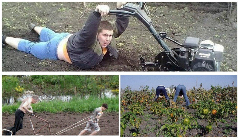 Поздравление юбилеем, картинки прикольные работа на огороде
