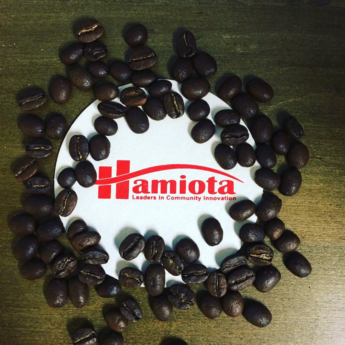 HamiotaMb photo