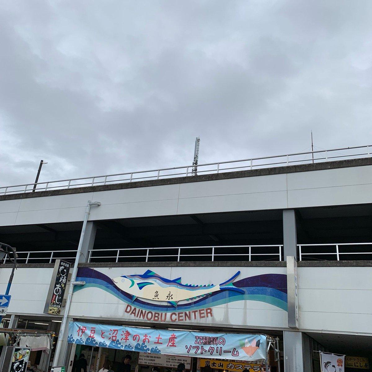沼津港 魚永