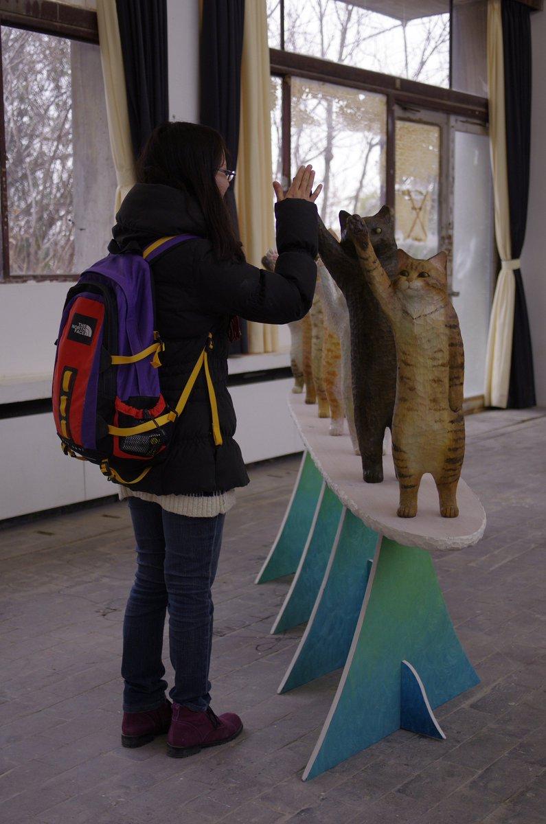 面白い体験が出来る装置を作りたい気持ちからできたもの!猫とハイタッチできるとは素晴らしい!
