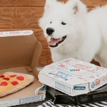 Image for the Tweet beginning: 🐶 + 🍕 = Man's
