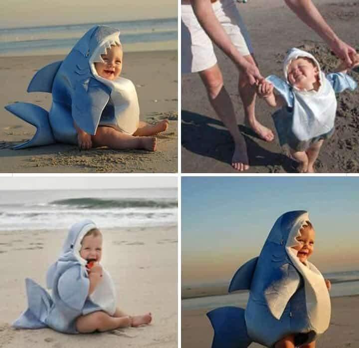 Baby Shark doo doo doo doo doo doo  <br>http://pic.twitter.com/kAhS7IPEAw