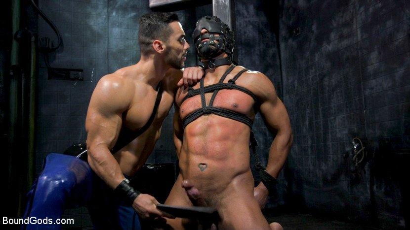 Noir male gay porn pics hd scene trailers