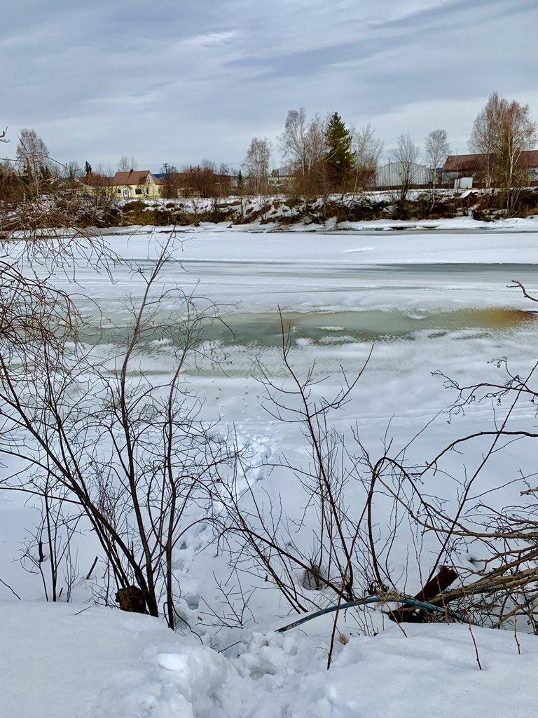 チェナ川。写真のエリアは凍ってますが、今年のフェアバンクスの春は早く、溶けているところも多かったです。 #Fairbanks #フェアバンクス #ChenaRiver