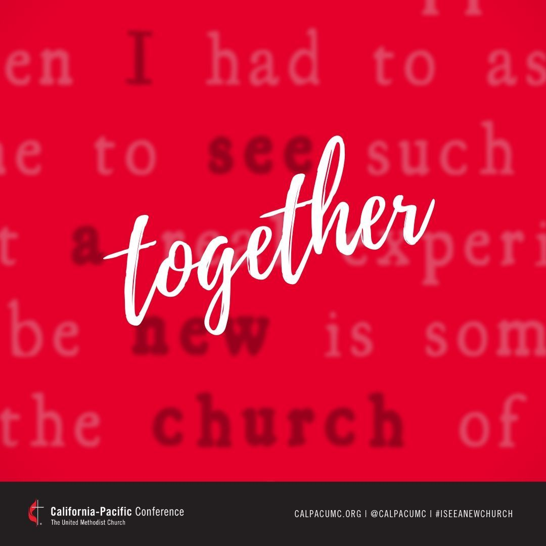 In what ways is our diversity an expression of God's love and grace? . . #iseeanewchurch #onechurch4all #gc2019 #umcgc