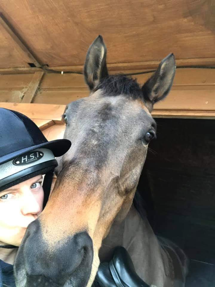 And HRH Joey just wanted a cuddle  #trusted #LoveYourPetDay #racehorse to #Riding #horse #AdoptDontShop<br>http://pic.twitter.com/bgCv1zQ8zz