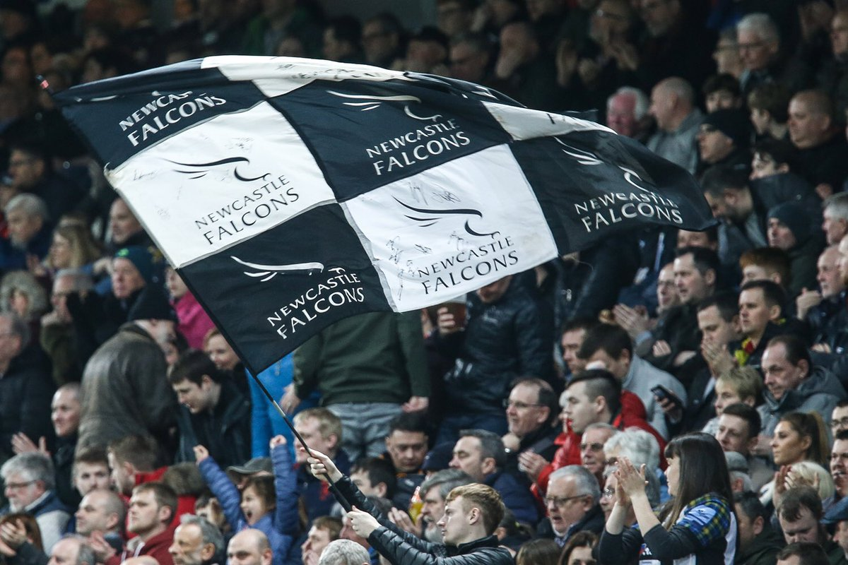 FalconsRugby