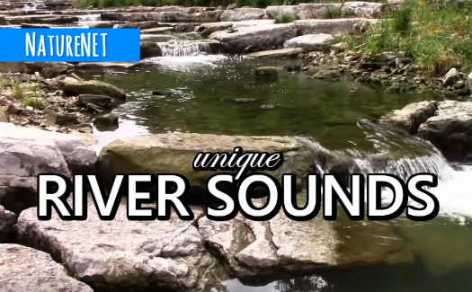 Ancient River Falls   Relaxing Nature Video https://buff.ly/2HDNGUv  #study #chill #sleep #relax #nap #meditate #river #nature