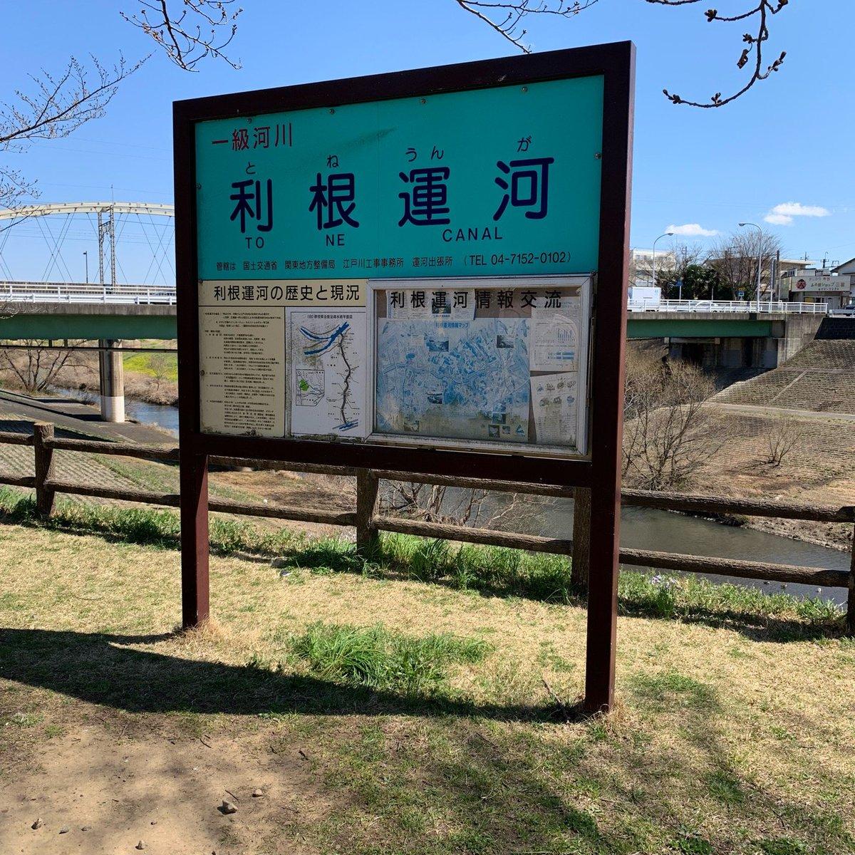 利根運河 運河水辺公園(8)