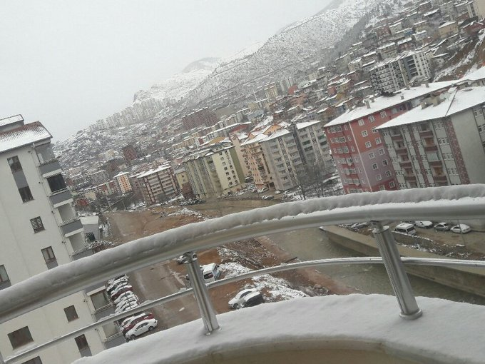 #Pazar Photo
