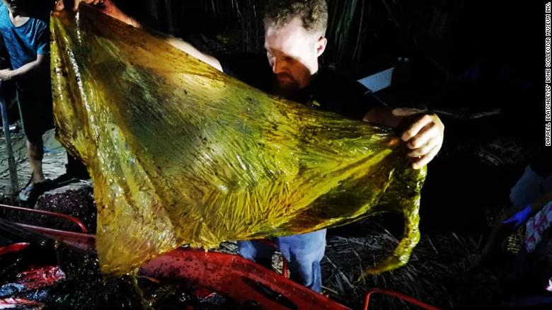 A young whale died of 'dehydration and starvation' after consuming 88 pounds of plastic bags https://t.co/xqCn4rmNE8 https://t.co/idnZ8sxYzO