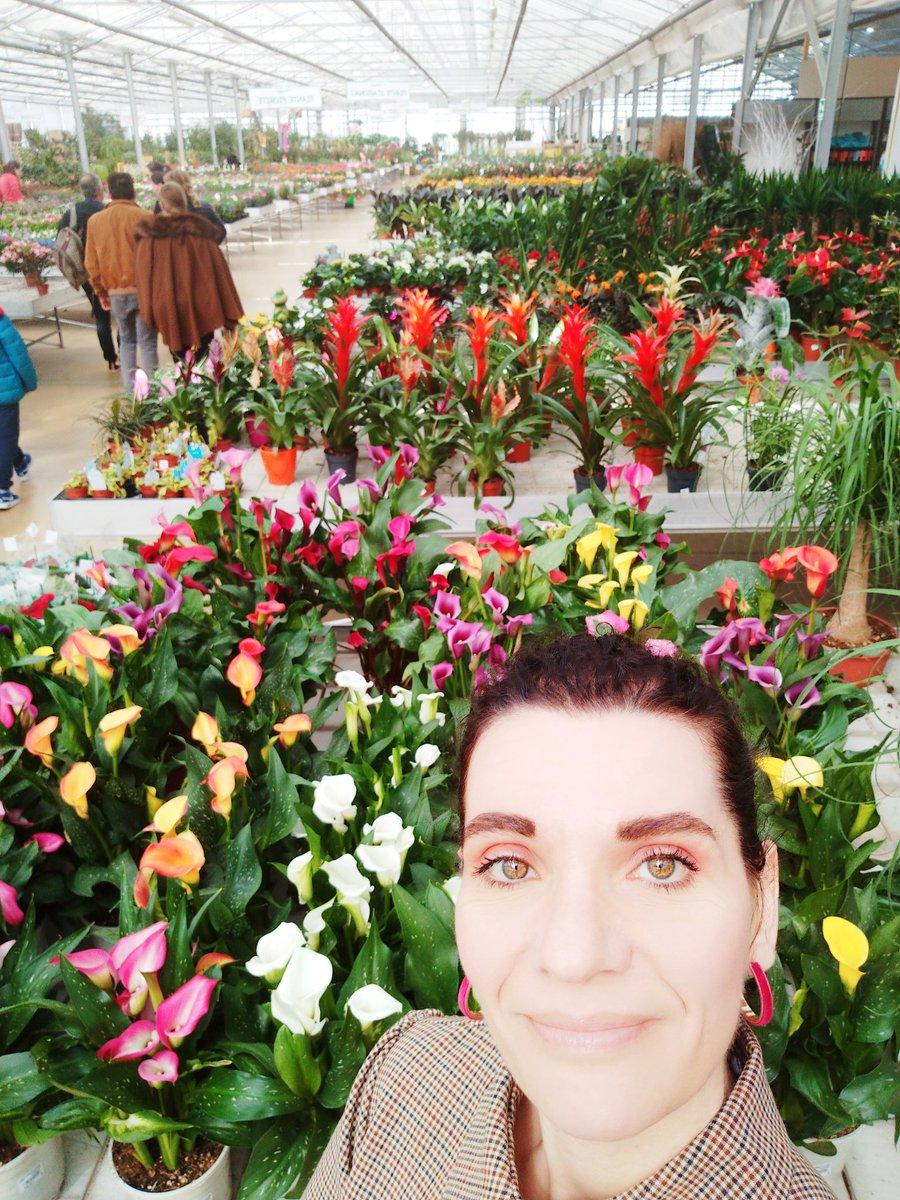 Buona domenica 😘 😘 😘. Oggi è una splendida giornata dopo il barbecue 😁😋😋😋😋 farò un po' di giardinaggio. Quindi!!!!! Acquisto dei fiori. #art #BuonaDomenica #FelizDomingo #SundayMotivation