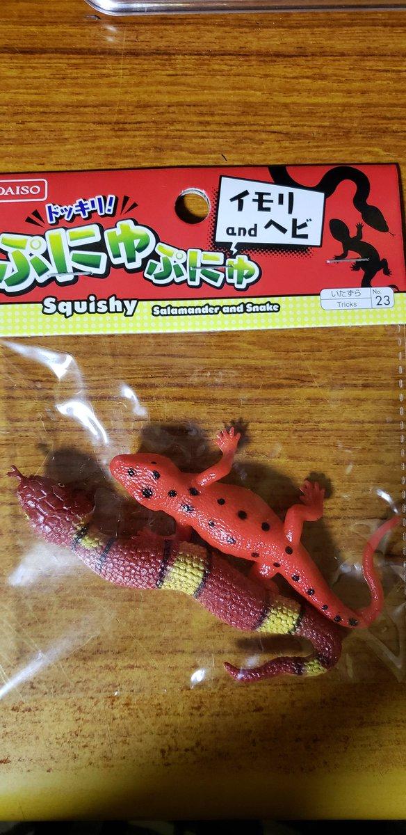 test ツイッターメディア - #DAISO #ダイソー #100均  #爬虫類 #爬虫類好きさんと繋がりたい   ぷにゅぷにゅ!!可愛い!!(≧∇≦)  無限にぷにゅぷにゅしていられる(*´д`*)ハァハァ(笑) https://t.co/qa19nZDF2y