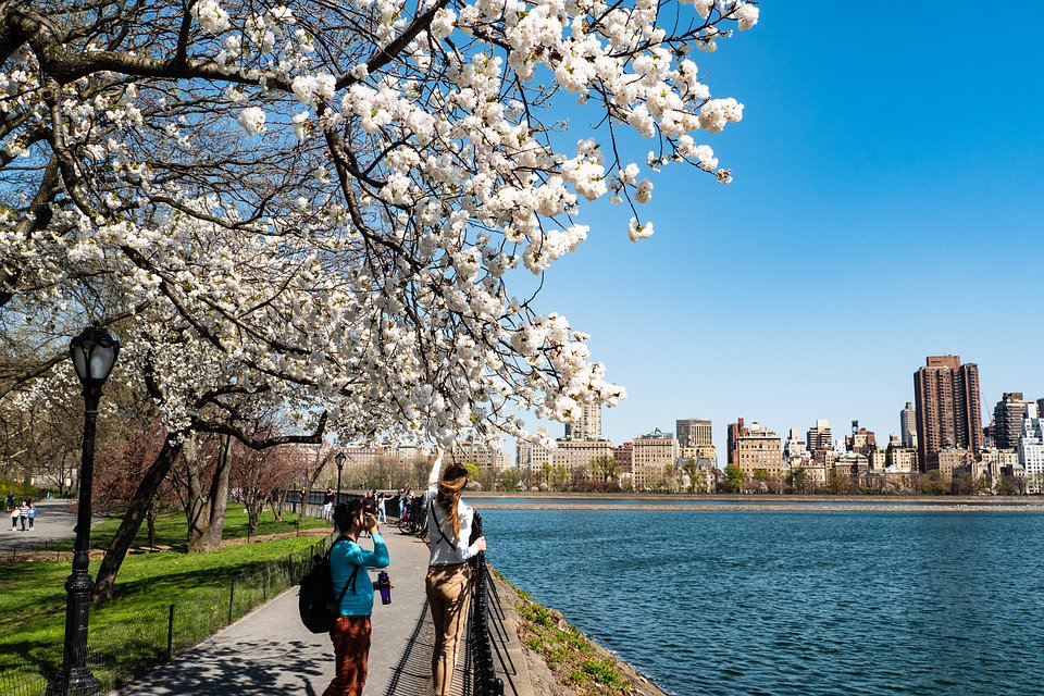 #Free Things to do in New York City  http://bit.ly/2W6T06T  #NYC #NewYorkCity #travel #vacation