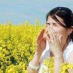 Image for the Tweet beginning: Find relief from seasonal allergies