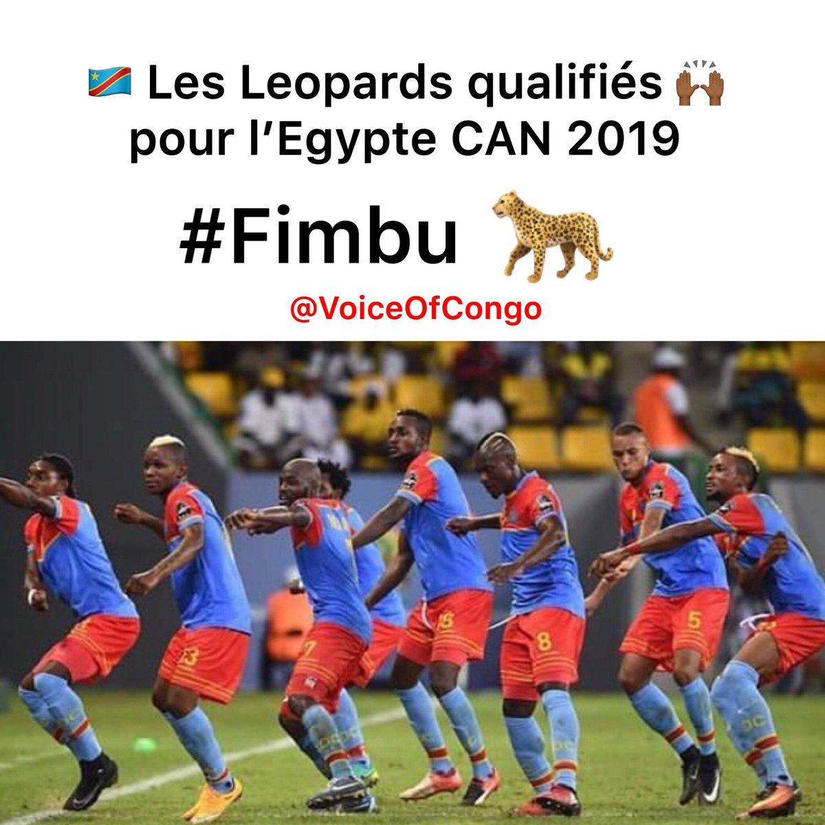 Les Léopards 🇨🇩🐆 qualifiés pour l'Égypte CAN 2019 après leur victoire contre Liberia 🇱🇷 . #Can2019