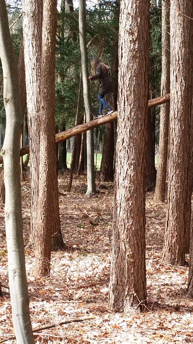 Spring has begun, let your children go outside! Tree climbing, #riskyplay, playing with #looseparts, over the ditch with a pole, #resilience. De lente is begonnen, stuur je kinderen naar buiten! Risicovol spelen, spelen met spullen fierlejeppen #zelfvertrouwen #creativiteit