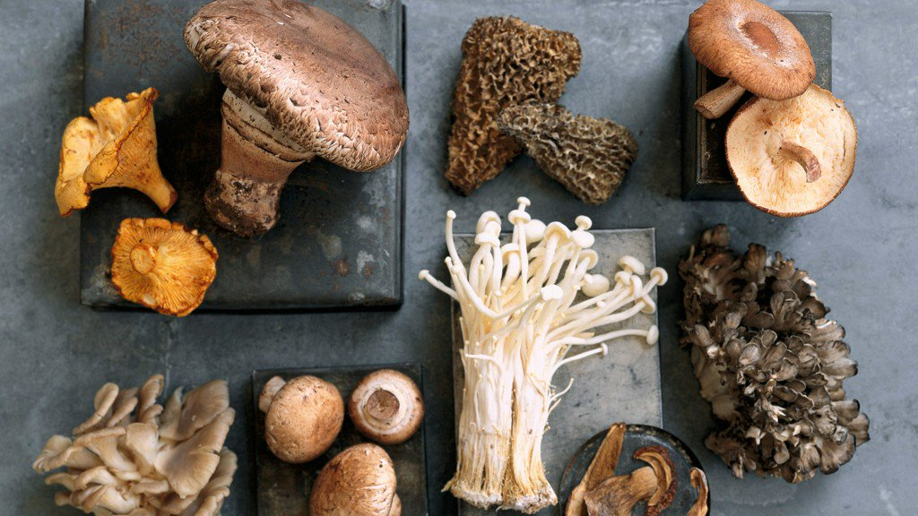 From ordinary to exotic, these nine mushrooms boost the flavor of any dish. http://bit.ly/2U5VCng