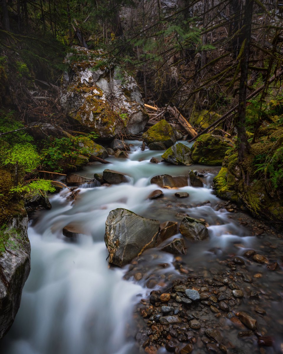 Snow's starting to melt.   Looking forward to ignoring TLC for just a bit.   #waterfall #longexposure #mountains #stream #SilkySunday #lush #river #landscapelovers #photograghy #pnw
