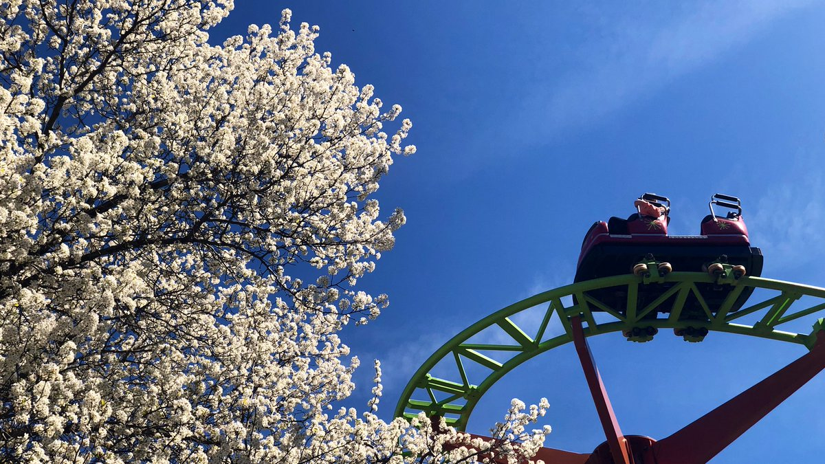 Happy Passholder Preview Day! What a beautiful day to preview the season 🌸😍