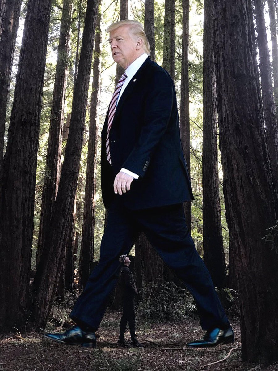 I got a new picture & a link, for ya, Sir Dan & Ladies, a Super Good morning on this beautiful Monday to ya!   Remember, that picture, James Comey, posted of himself in the woods?  Haa   https://twitter.com/dianneinindiana/status/1110120763338776578?s=21…