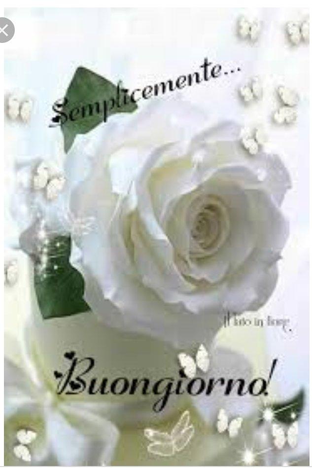 Buon Giorno Mariella Splendido Lunedì Un Saluto Carissima