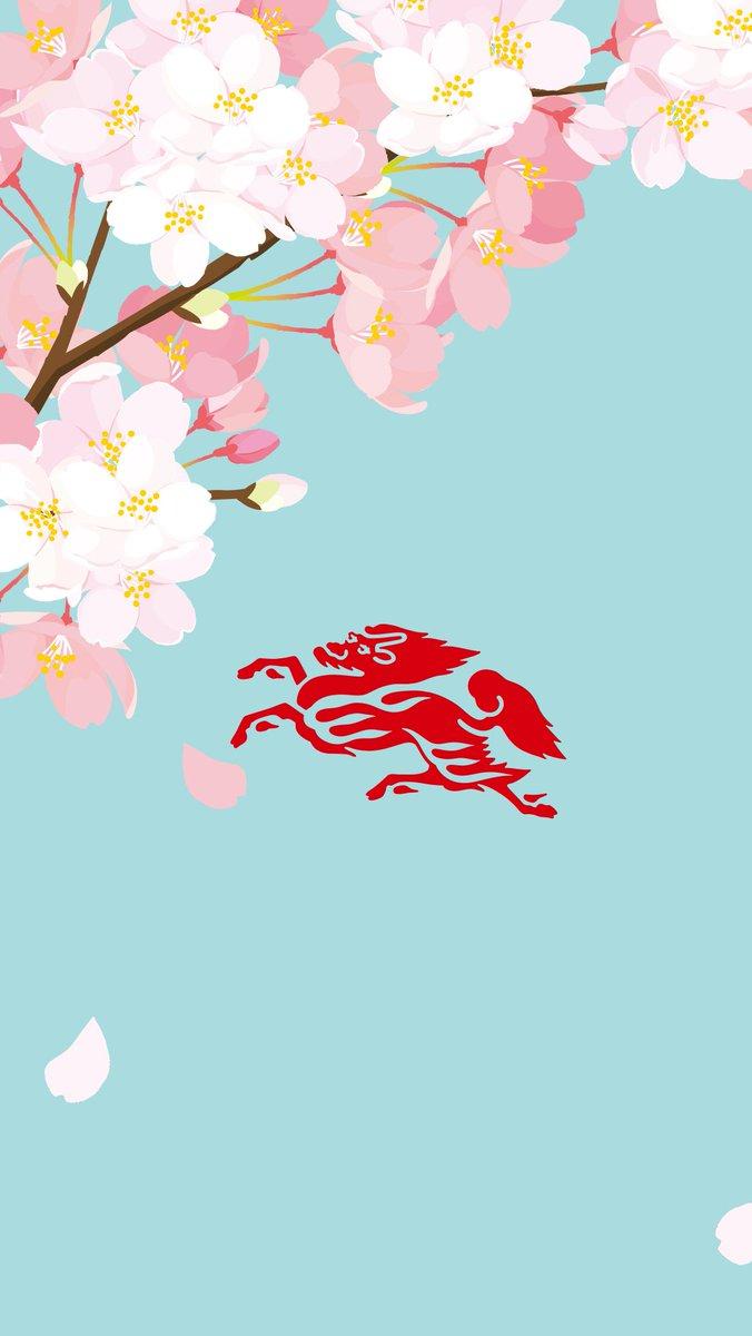 キリンビール Kirin Beer Pa Twitter 今年も桜が咲き始めました キリンからちょっと早めに満開の桜をプレゼント 壁紙に設定したらスクショで教えてね さくらの日