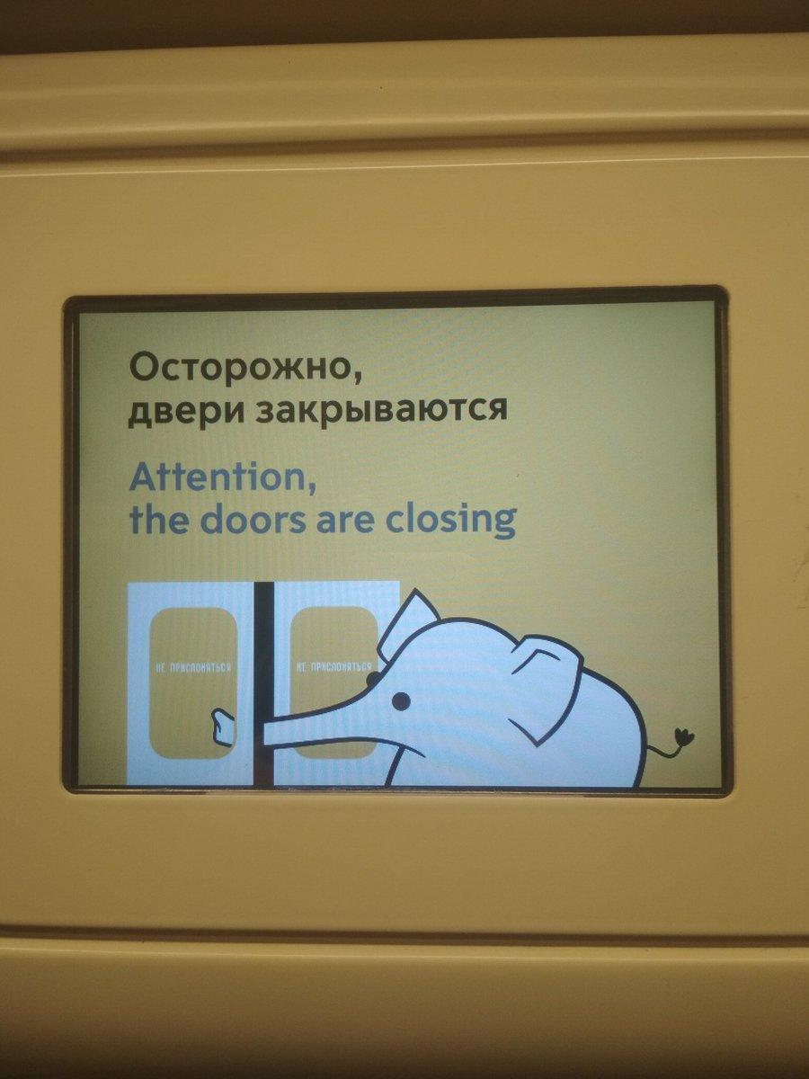 осторожно дверь картинки увести книжки
