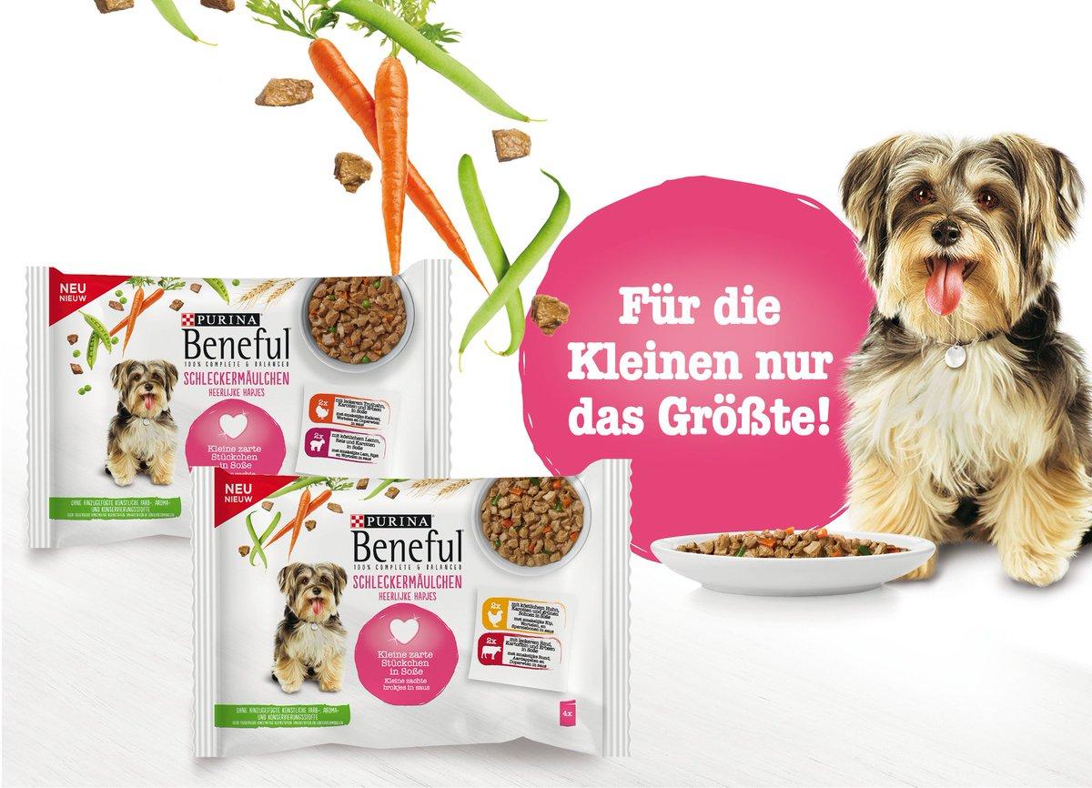 Kleine Hunde, große Freude! http://pr-gateway.de/s/362310  #PURINABENEFUL #Schleckermäulchen #kleineHunde #Pouch #Hundenahrungpic.twitter.com/KOKa9kmvl2